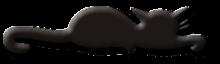 Sabbycat